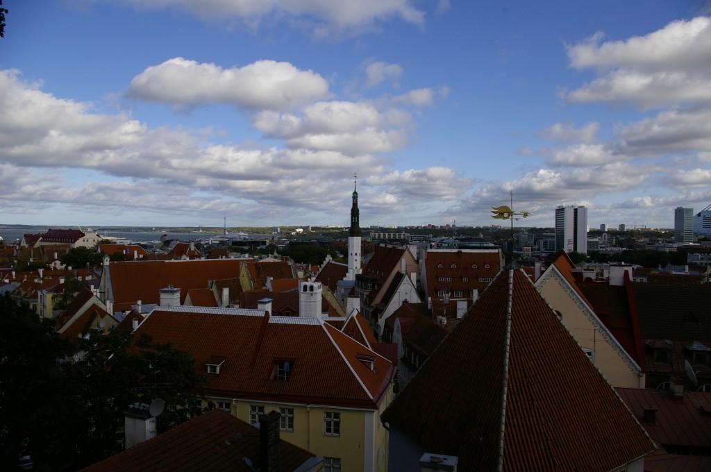Dar daugiau miesto stogų